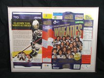 1998 U.S. Olympic Gold Medal Wheaties Box Never Folded EC in Bolingbrook, Illinois